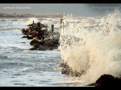 foto-giorno-lorenzo-ceccarelli -Vento e mare grosso