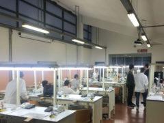Scuola Benelli di Pesaro