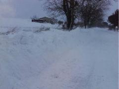 Neve a Pesaro