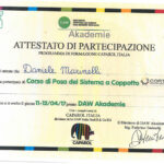 Certificazione della Ditta Marinelli Sisto srl di San Lorenzo in Campo