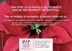 Raccolta fondi AIL Pesaro