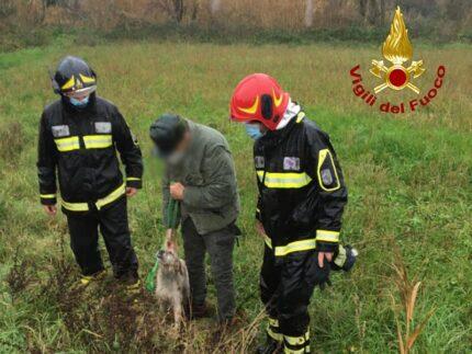 Cane disperso e recuperato nei pressi del fiume Foglia