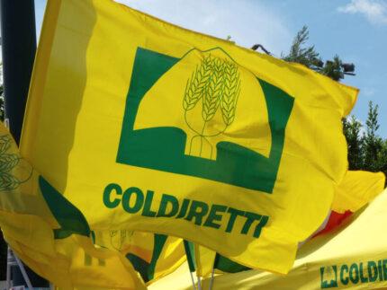 Bandiera di Coldiretti