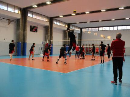 Montesi Volley